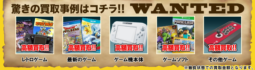 Newニンテンドー2DS LLWANTED