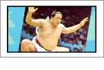 カルビー 大相撲カード
