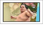 BBM 大相撲カード