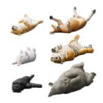 パンダの穴 ZooZooZoo 第4弾 のんきだ寝 全6種