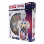 Supreme 18AW Female Anatomy Model / シュプリーム 人体模型 アナトミー 女性