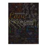 初回限定 KinKi Kids DVD Concert 2013-2014 L
