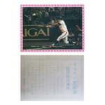 カルビー プロ野球 カード 1978年 ヤクルト初優勝 29年目の栄光 ヒルトン