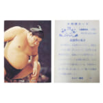 293033カルビー 大相撲 カード 1973年 29 大麒麟