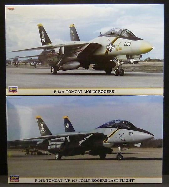 ハセガワ 1/48 F-14 トムキャット ジョリーロジャース