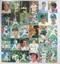 カルビー プロ野球チップスカード 1987年No.1~66 当時物