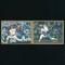 カルビー プロ野球 カード 1988 325 大野 329 小野