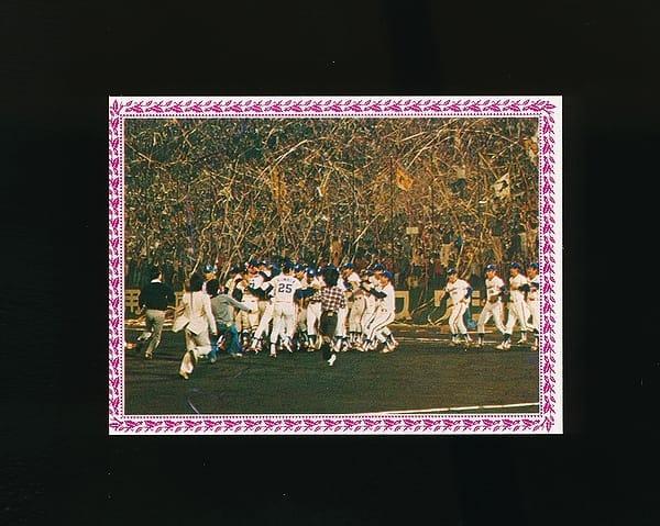 カルビー プロ野球 カード 1978年 ヤクルト初優勝