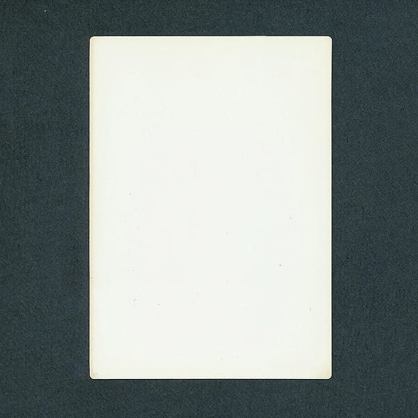 ドラクエ4 ドラゴンクエスト カードコレクションズ ホロ_3