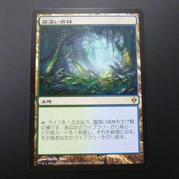 MTG 霧深い雨林 Misty Rainforest 日本語 土地 緑 青_1