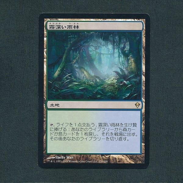 MTG 霧深い雨林 Misty Rainforest 日本語 土地 緑 青_2