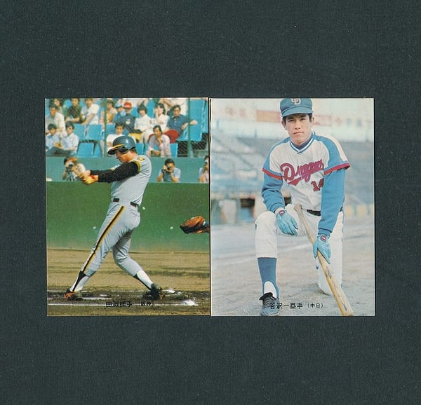カルビー プロ野球カード 74年 237 田淵 241 谷沢_1