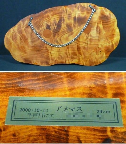 魚 剥製 アメマス 34cm / 釣りキチ工房 飾り物_3