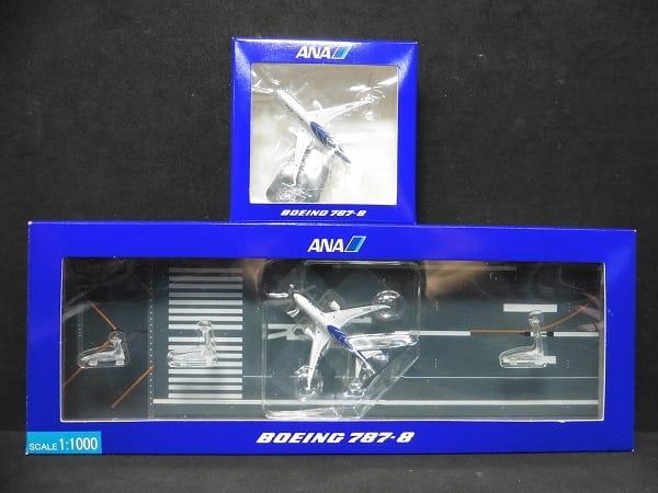 ANA 1/1000 ボーイング 787-8 ランウェイ付 /全日本空輸_1