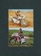カルビー 旧 仮面ライダー カード 138 異種 T版 TR8版