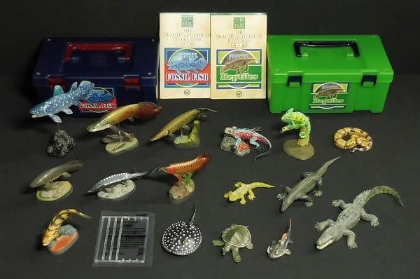 カロラータ 立体図鑑 古代魚 爬虫類 フィギュアボックス