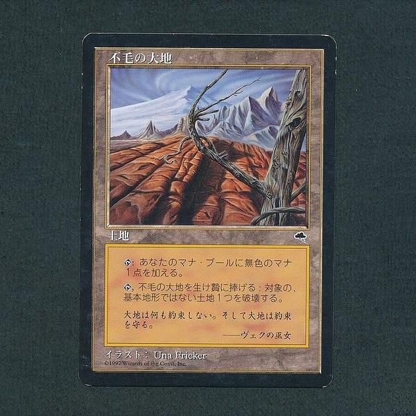 MTG 不毛の大地 Wasteland 日本語 土地 レガシー TMP_1