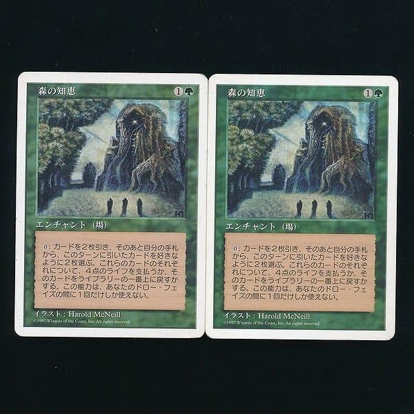 MTG 森の知恵 Sylvan Library 日本語版 2枚 緑 レガシー
