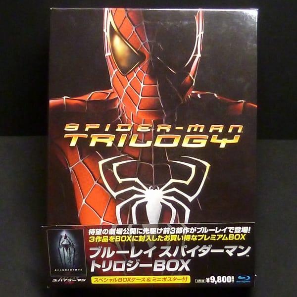 BD スパイダーマン トリロジーBOX ミニポスター付き