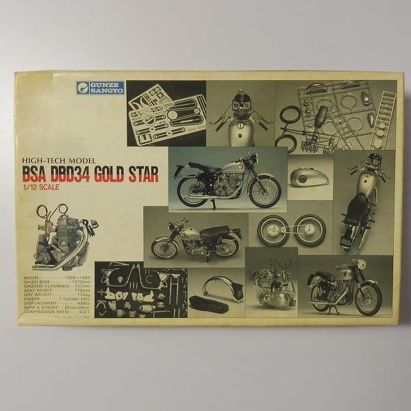 グンゼ産業 初版 1/12 BSA DBD34 ゴールドスター バイク