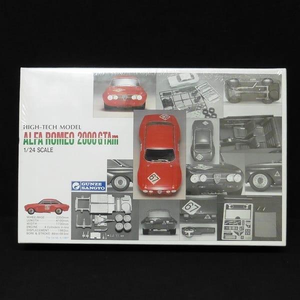 グンゼ 1/24 アルファロメオ 2000 GTAm / プラモ 車