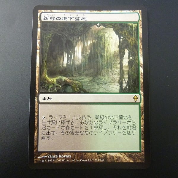 MTG 新緑の地下墓地 Verdant Catacombs 日本語 黒 緑