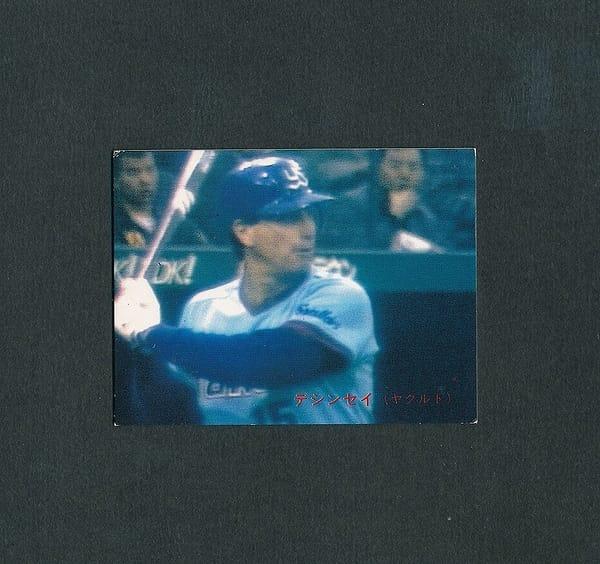 カルビー プロ野球 カード 1988年 110 デシンセイ