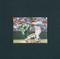 カルビー プロ野球 カード 1982年 No.366 石毛宏典