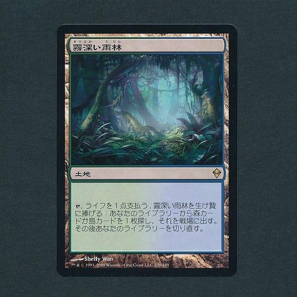 MTG 霧深い雨林 Misty Rainforest 日本語 土地 緑 青