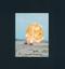 カルビー 当時物 旧 仮面ライダー カード 540 YR21