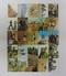 カルビー 旧 仮面ライダー カード 450-479 セミコンプ