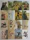 カルビー 旧 仮面ライダー カード 472-496 16枚 当時物