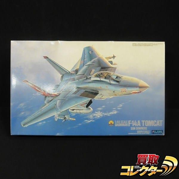 フジミ 1/48 F-14A トムキャット サンダウナーズ_1