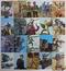 カルビー 当時物 旧 仮面ライダー カード 95-126 20枚 1号