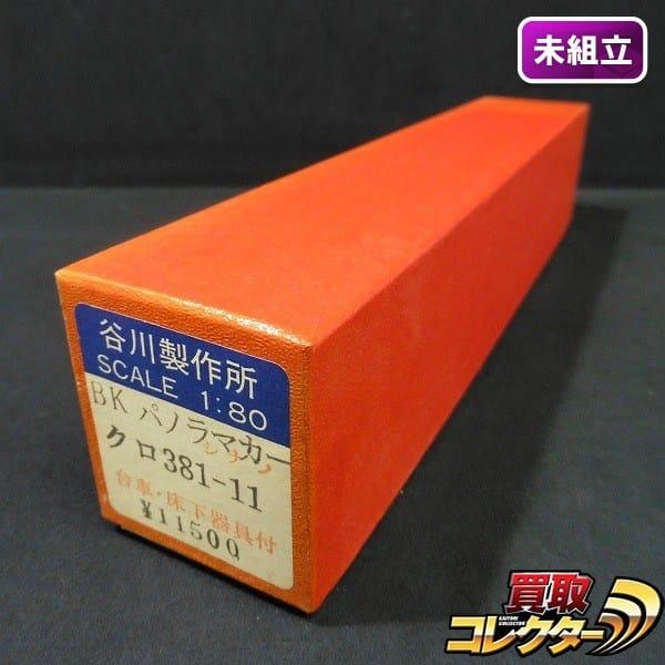 谷川製作所 HO BK パノラマカー クロ381-11 / 車体バラキット