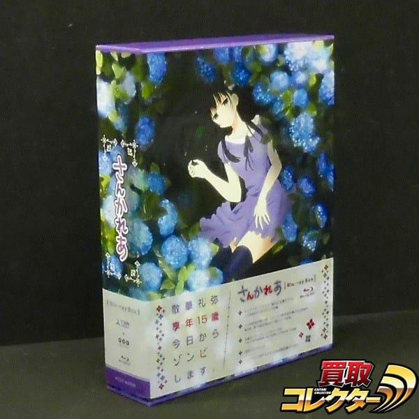 さんかれあ Blu-ray BOX 散華礼弥 アニメ / はっとりみつる
