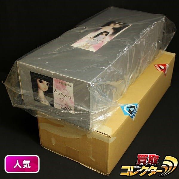 ボークス MSD サクラ Sakura 女の子 全高約42cm 巫女衣装付き