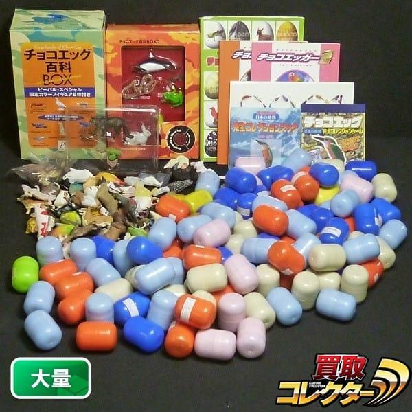 チョコエッグ 大量 百科BOX カブトムシ オコジョ ジュゴン他
