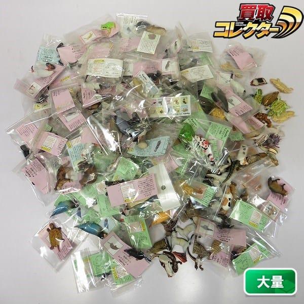 チョコエッグ 大量 ペット動物 日本の動物コレクション 他