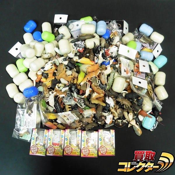 チョコQ チョコエッグ 日本の動物コレクション ツチノコ 他 大量