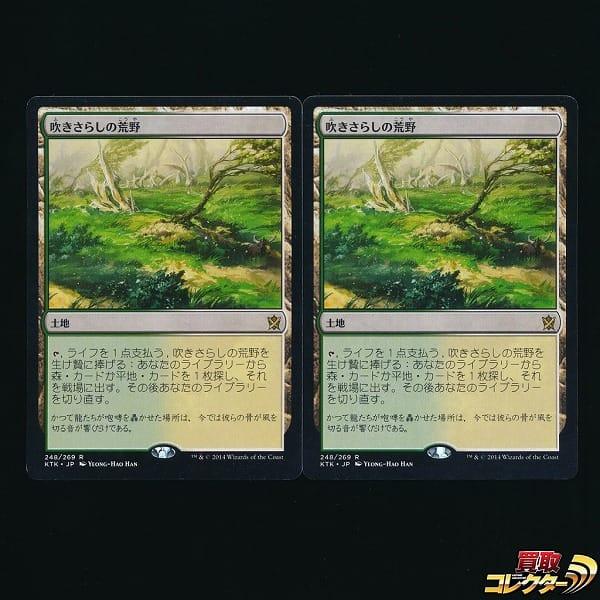 MTG 吹きさらしの荒野 Windswept Heath 日本語 2枚 土地 緑 白_1