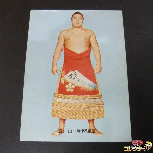 カルビー 大相撲 カード 1973年 9 豊山 広光 当時物