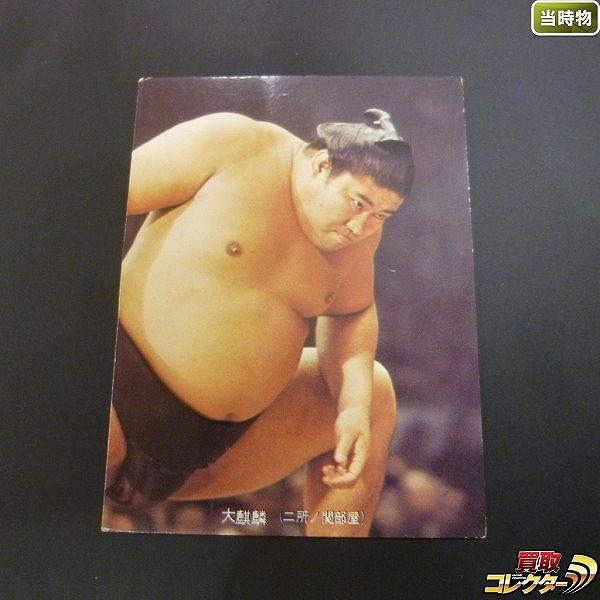 カルビー 大相撲 カード 1973年 29 大麒麟 当時物