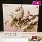 PS3 250GB FINAL FANTASY XIII ライトニング エディション