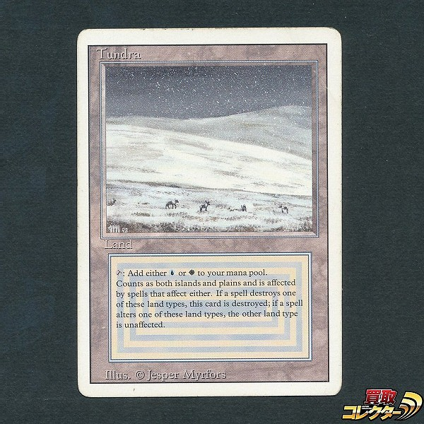 MTG Tundra 英語版 3ED 青 白 土地 レガシー ヴィンテージ