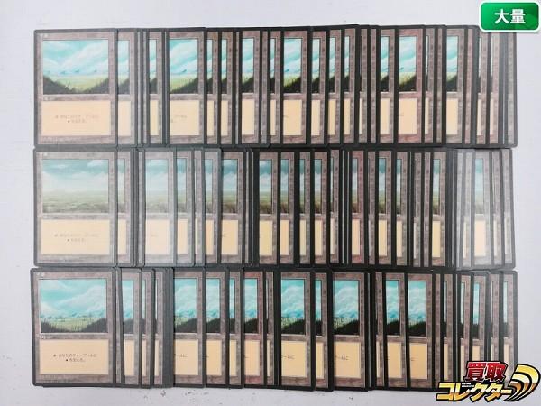 MTG 基本土地 平地 Plains 日本語版 計120枚 第4版 黒枠 絵柄3種_1