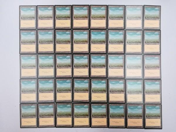 MTG 基本土地 平地 Plains 日本語版 計120枚 第4版 黒枠 絵柄3種_3