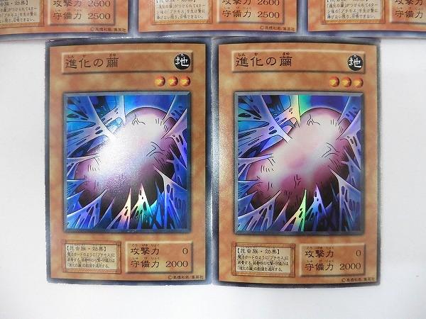 遊戯王 初期 グレート・モス  シークレットレア 進化の繭 スーパーレア_3