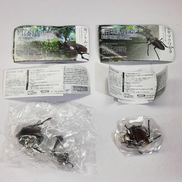 ユージン 原色 日本昆虫図鑑I 改訂増補版 シークレット2種含 全17種_2